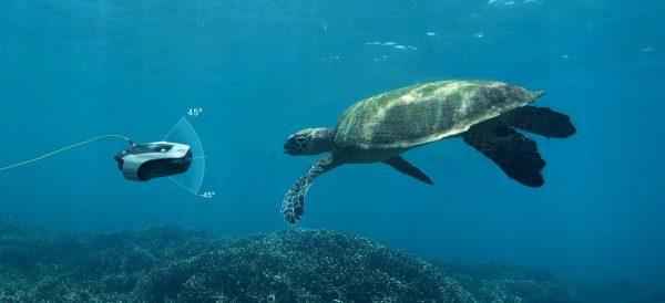 Mito Turtle FS e1582386868433